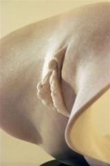 scale_vagina